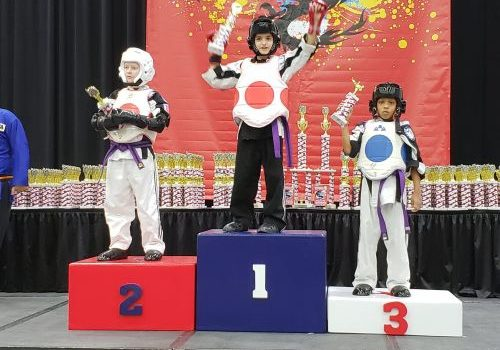 spring-karate-tournament